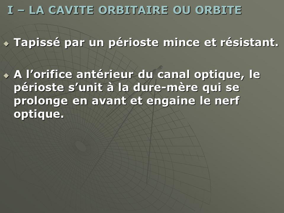 I – LA CAVITE ORBITAIRE OU ORBITE