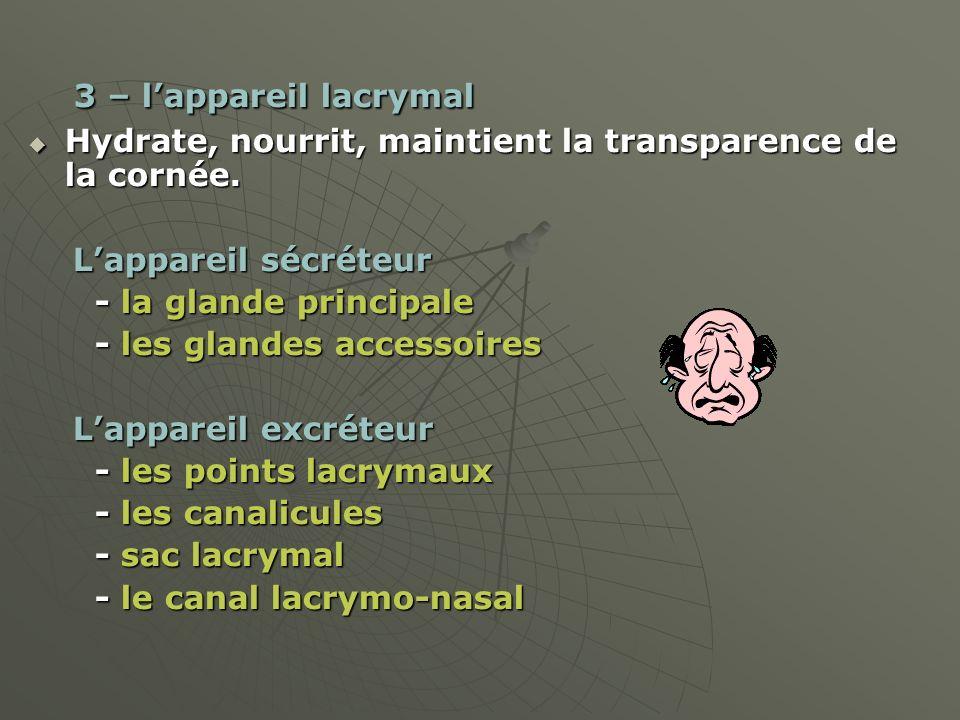 3 – l'appareil lacrymal Hydrate, nourrit, maintient la transparence de la cornée. L'appareil sécréteur.