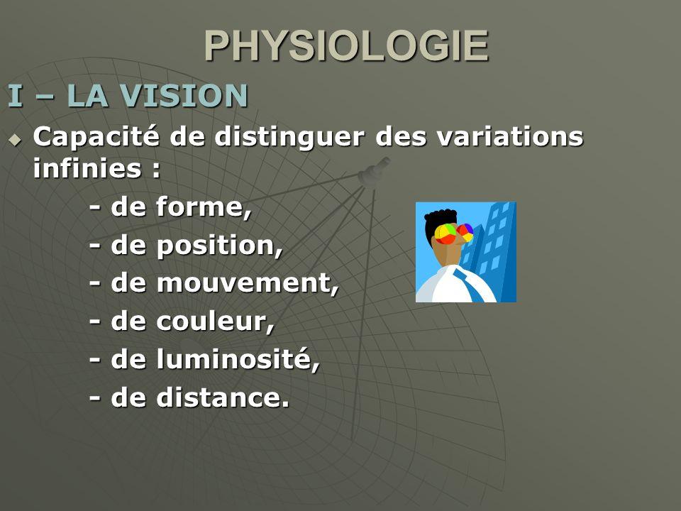 PHYSIOLOGIE I – LA VISION