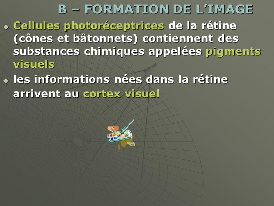 B – FORMATION DE L'IMAGE