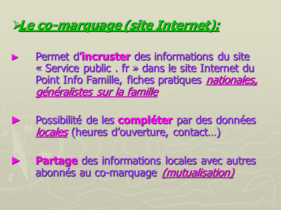 Le co-marquage (site Internet):