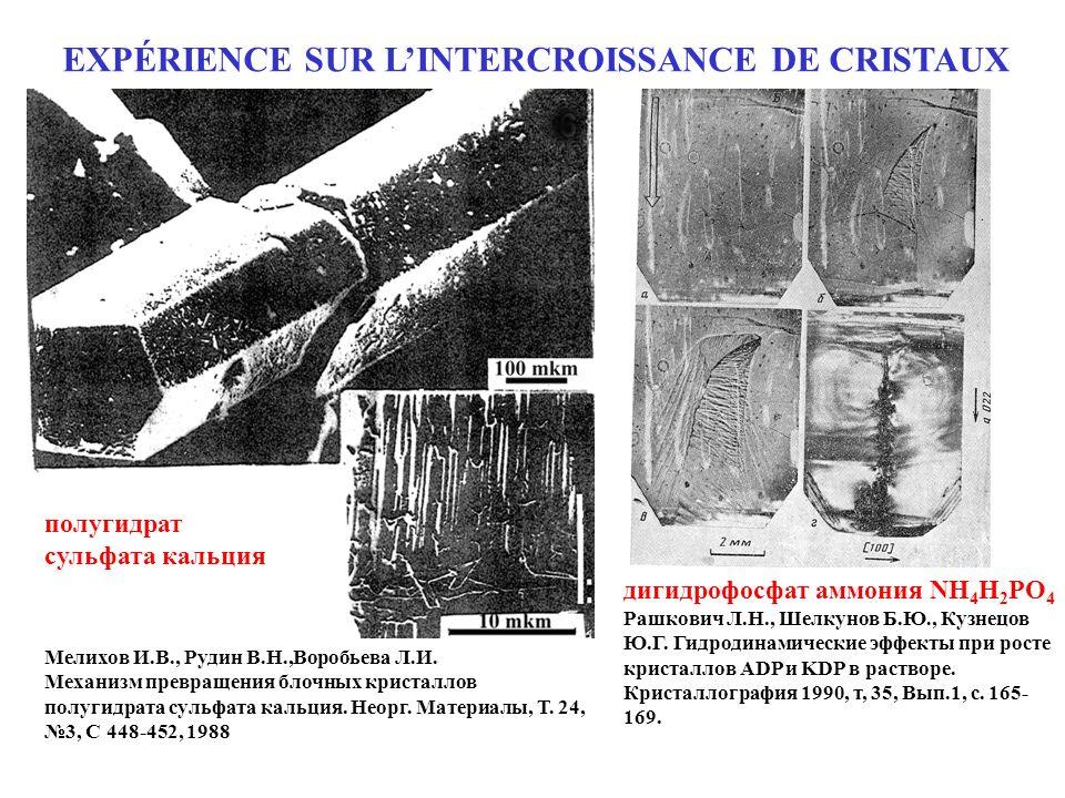 EXPÉRIENCE SUR L'INTERCROISSANCE DE CRISTAUX