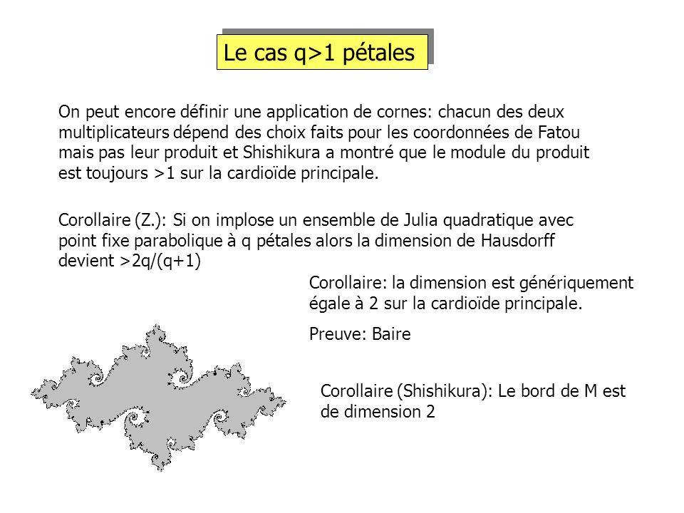 Le cas q>1 pétales