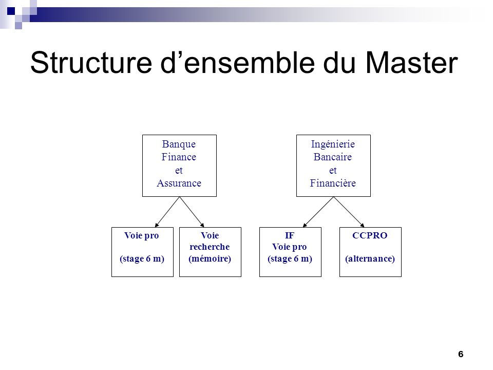 Structure d'ensemble du Master