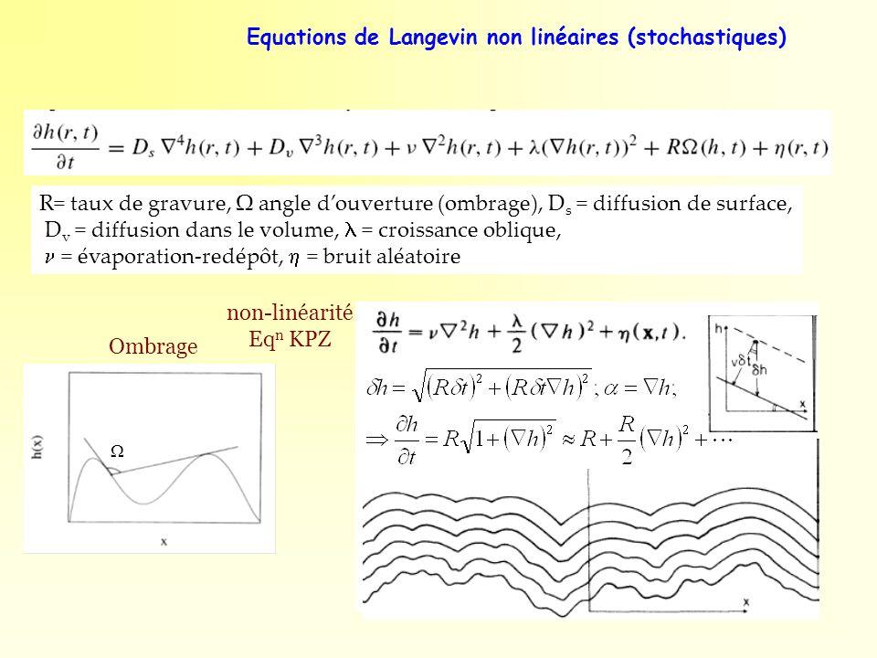 Equations de Langevin non linéaires (stochastiques)