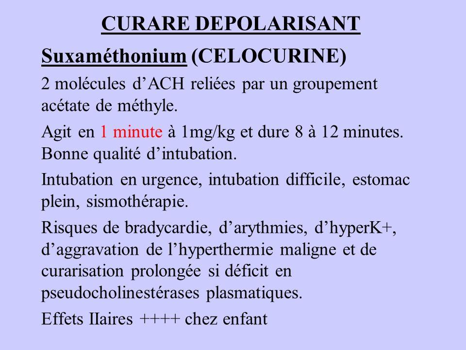 Suxaméthonium (CELOCURINE)