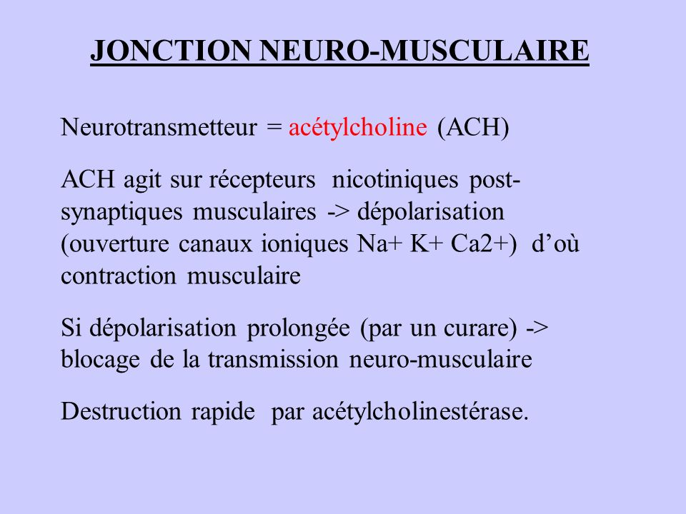 JONCTION NEURO-MUSCULAIRE
