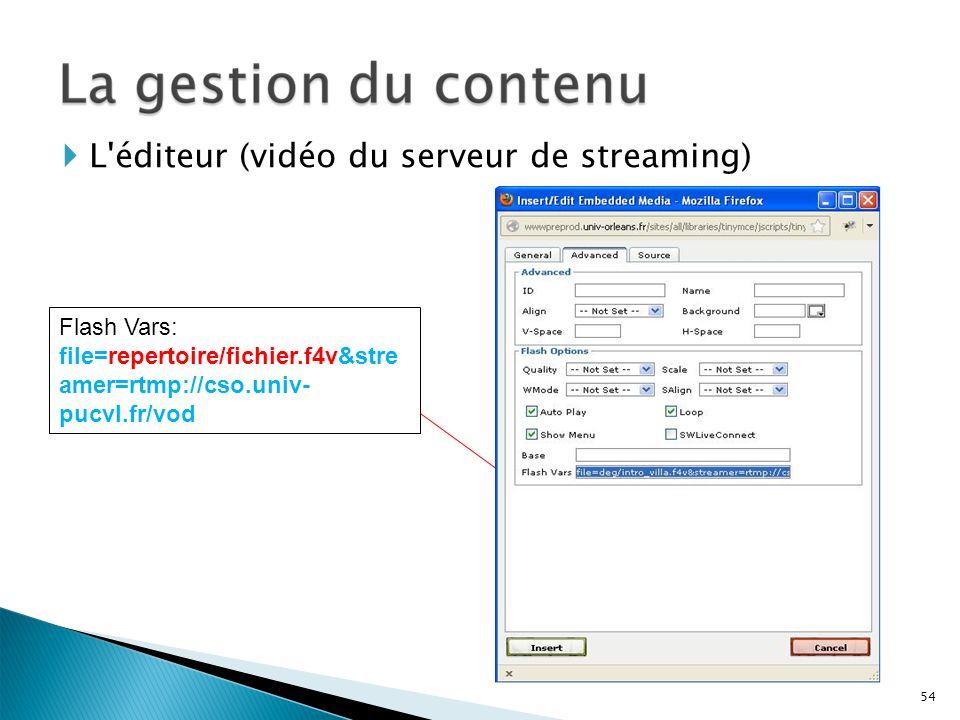 L éditeur (vidéo du serveur de streaming)