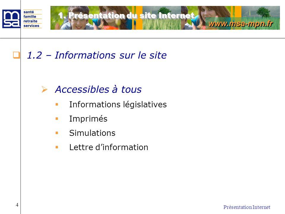 1.2 – Informations sur le site
