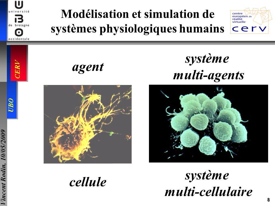 Modélisation et simulation de systèmes physiologiques humains