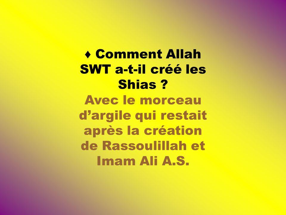 ♦ Comment Allah SWT a-t-il créé les Shias