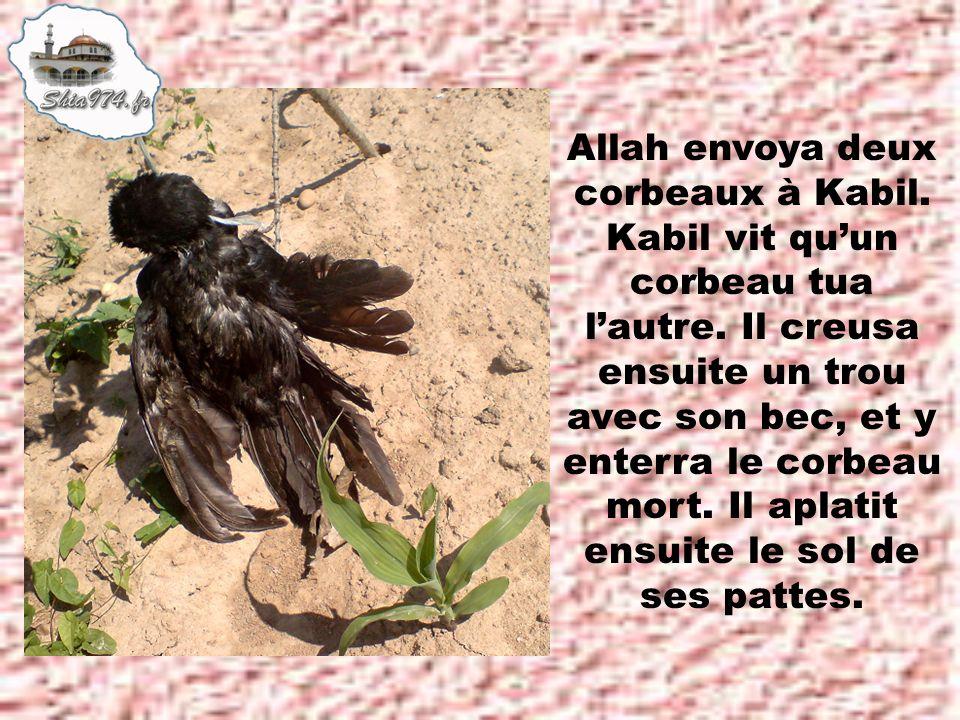 Allah envoya deux corbeaux à Kabil. Kabil vit qu'un corbeau tua l'autre.