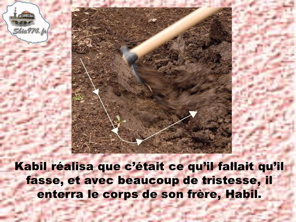 Kabil réalisa que c'était ce qu'il fallait qu'il fasse, et avec beaucoup de tristesse, il enterra le corps de son frère, Habil.