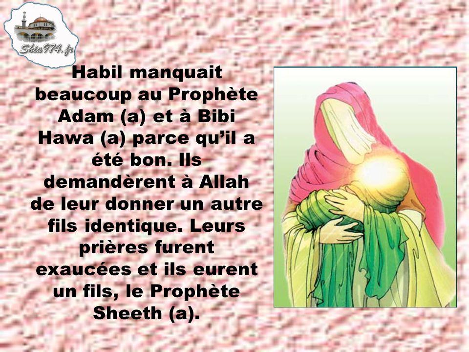 Habil manquait beaucoup au Prophète Adam (a) et à Bibi Hawa (a) parce qu'il a été bon.