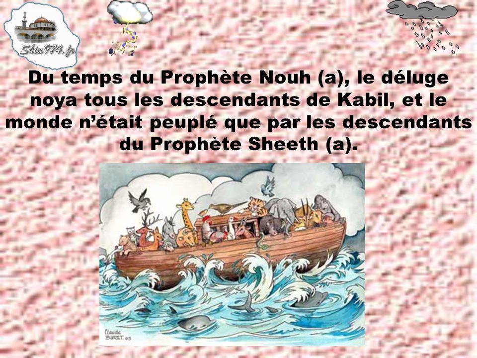 Du temps du Prophète Nouh (a), le déluge noya tous les descendants de Kabil, et le monde n'était peuplé que par les descendants du Prophète Sheeth (a).