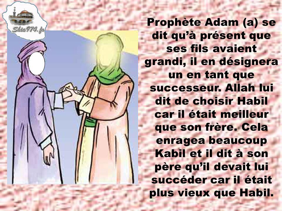 Prophète Adam (a) se dit qu'à présent que ses fils avaient grandi, il en désignera un en tant que successeur.