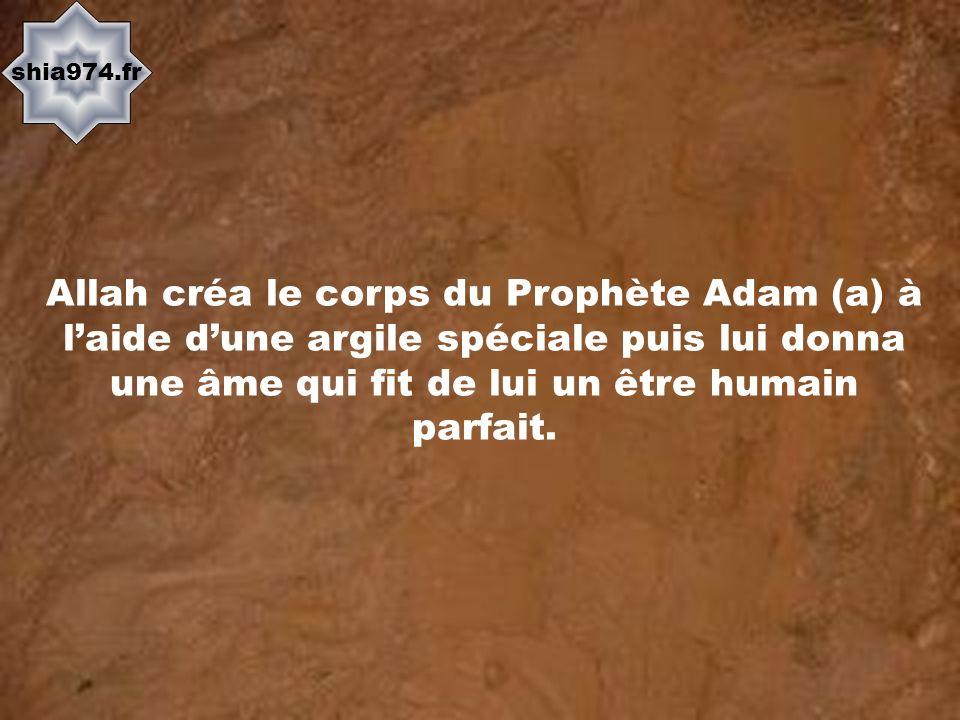shia974.fr Allah créa le corps du Prophète Adam (a) à l'aide d'une argile spéciale puis lui donna une âme qui fit de lui un être humain parfait.