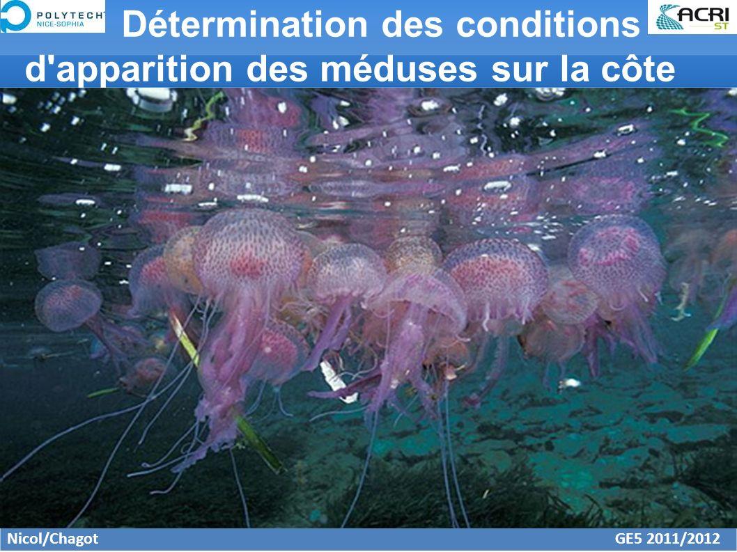 Détermination des conditions d apparition des méduses sur la côte