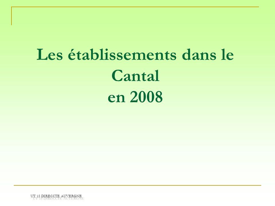 Les établissements dans le Cantal en 2008