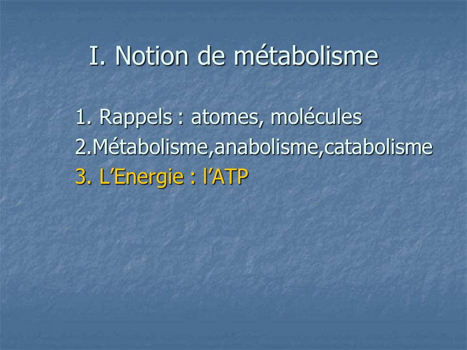 I. Notion de métabolisme