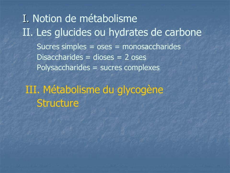 II. Les glucides ou hydrates de carbone