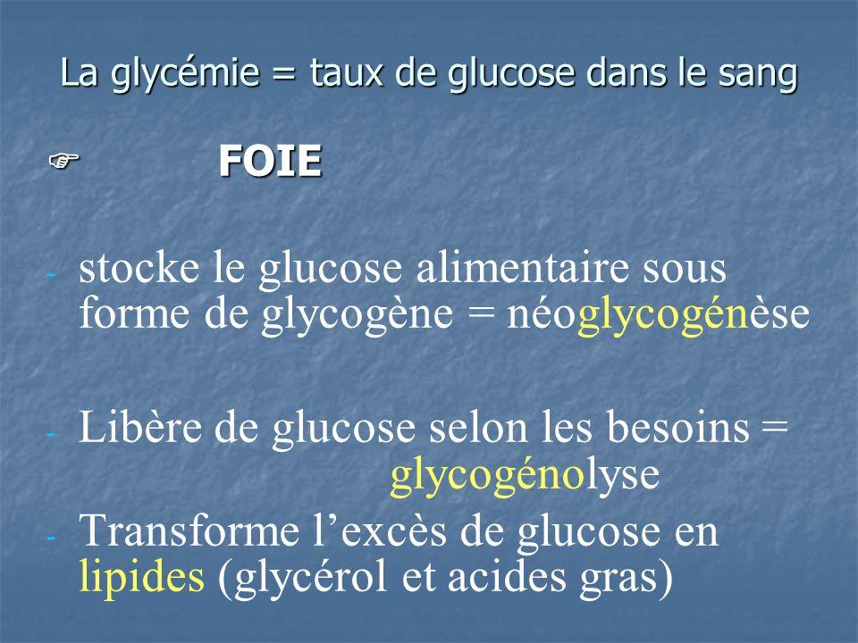 La glycémie = taux de glucose dans le sang