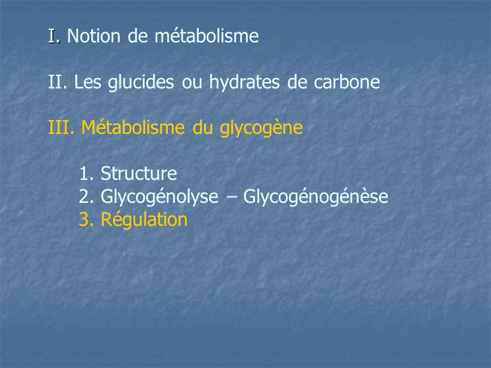 II. Les glucides ou hydrates de carbone III. Métabolisme du glycogène