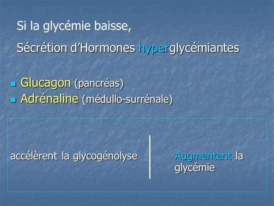 Sécrétion d'Hormones hyperglycémiantes