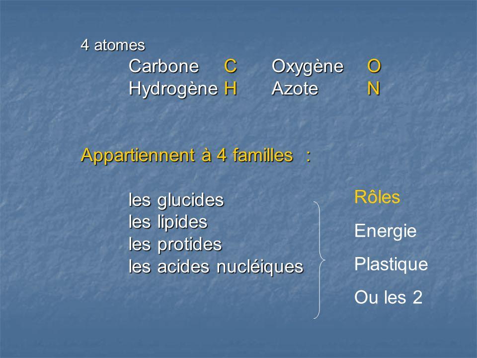 Appartiennent à 4 familles : les glucides les lipides les protides