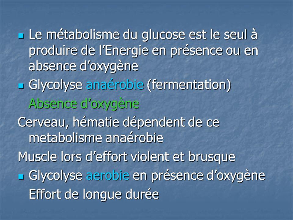 Le métabolisme du glucose est le seul à produire de l'Energie en présence ou en absence d'oxygène
