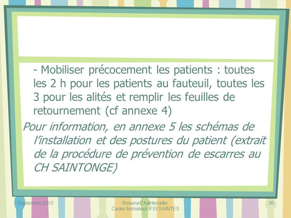 Roxane Chantecaille, Cadre formateur IFSI SAINTES