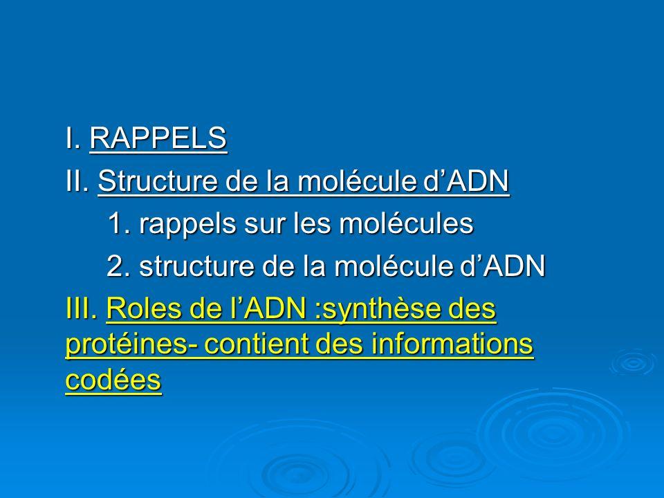 I. RAPPELS II. Structure de la molécule d'ADN. 1. rappels sur les molécules. 2. structure de la molécule d'ADN.