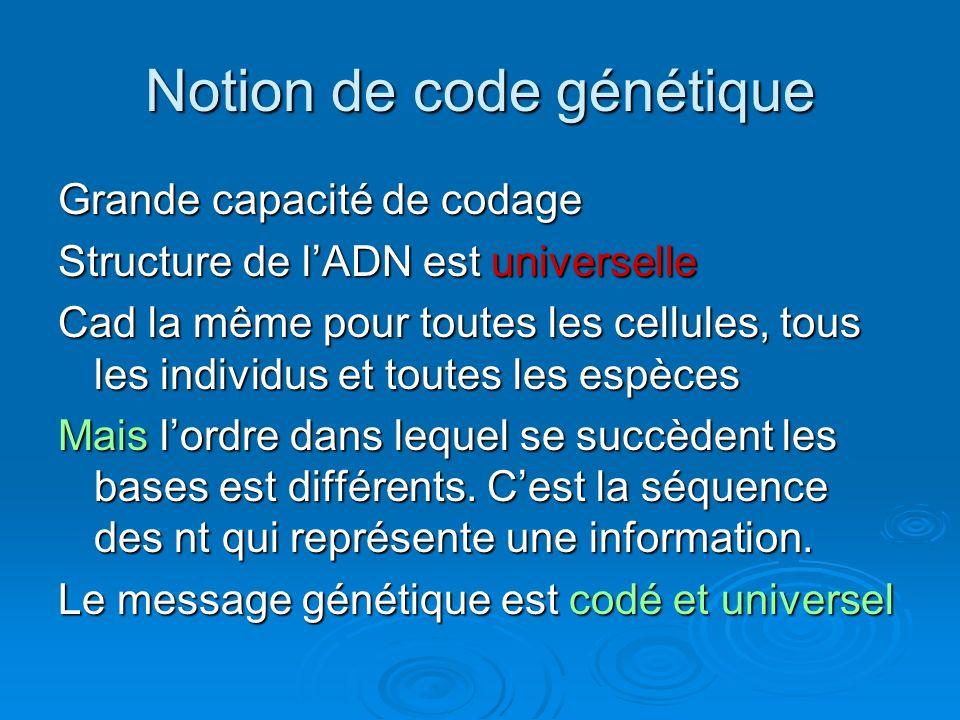 Notion de code génétique