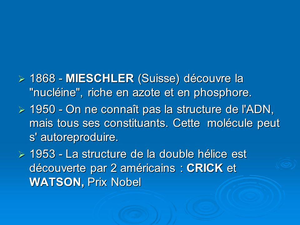 1868 - MIESCHLER (Suisse) découvre la nucléine , riche en azote et en phosphore.