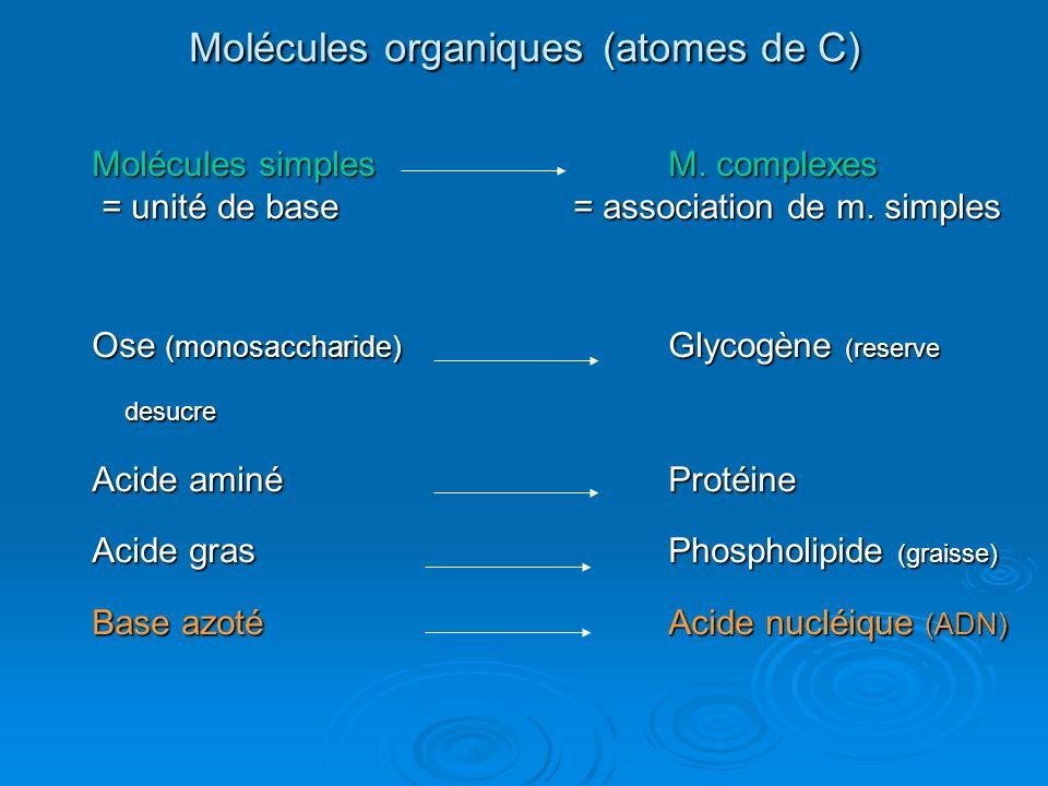 Molécules organiques (atomes de C)