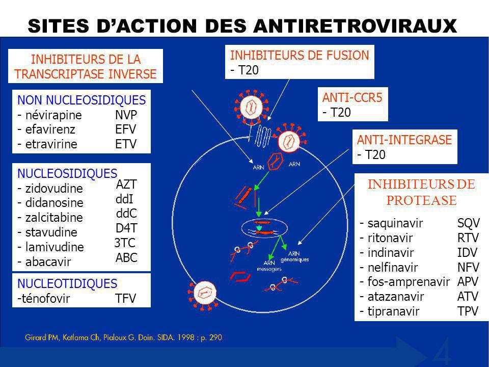 SITES D'ACTION DES ANTIRÉTROVIRAUX