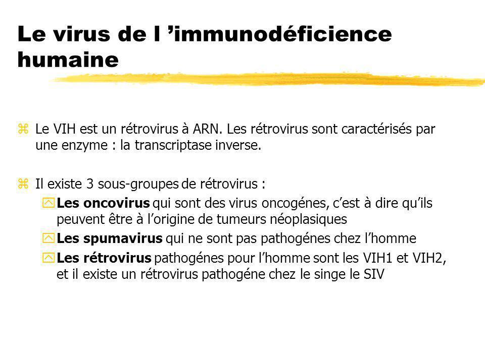 Le virus de l 'immunodéficience humaine