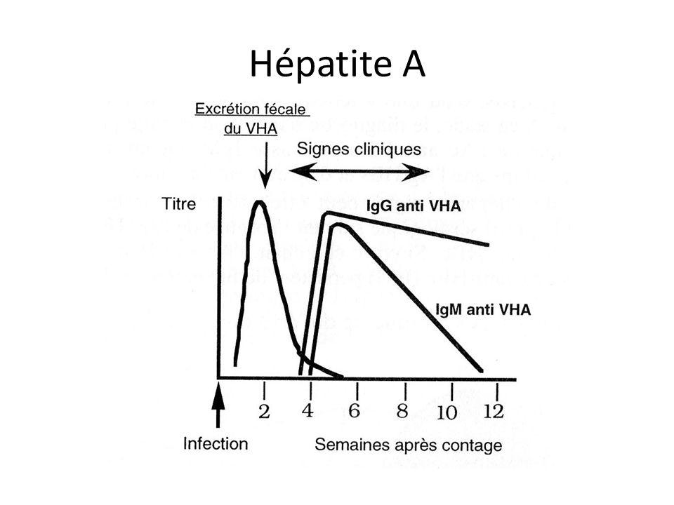 Hépatite A