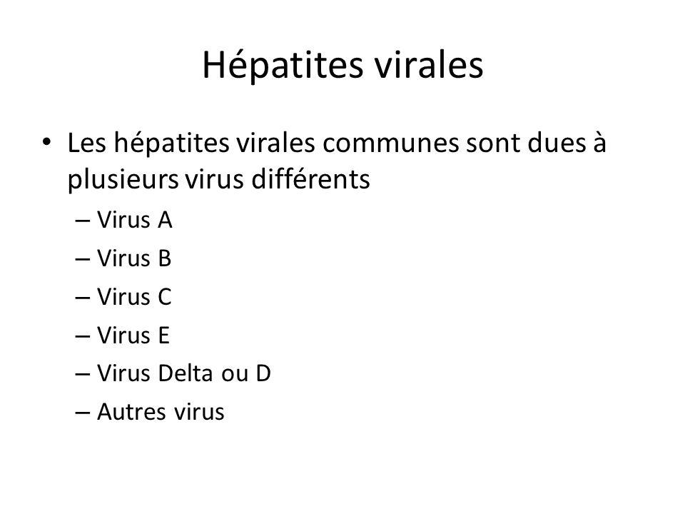 Hépatites virales Les hépatites virales communes sont dues à plusieurs virus différents. Virus A. Virus B.