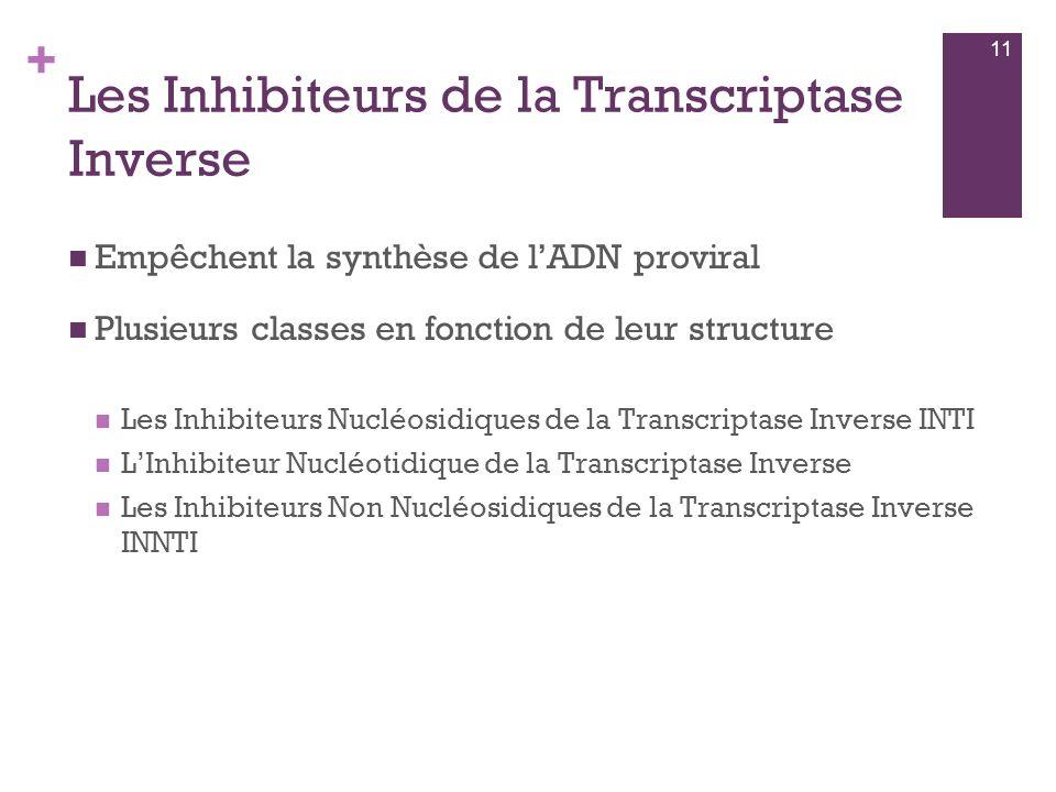 Les Inhibiteurs de la Transcriptase Inverse