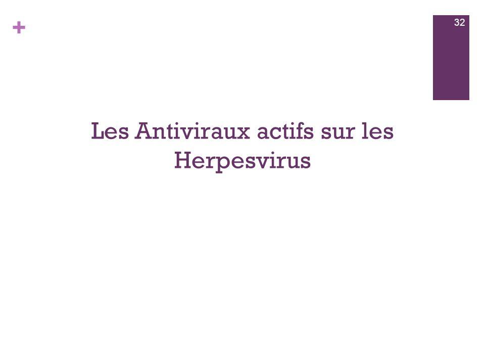 Les Antiviraux actifs sur les Herpesvirus