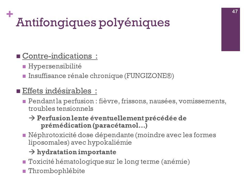 Antifongiques polyéniques