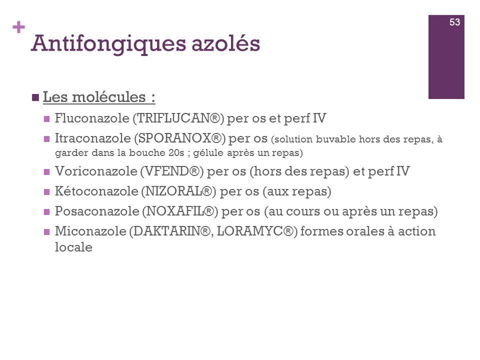 Antifongiques azolés Les molécules :