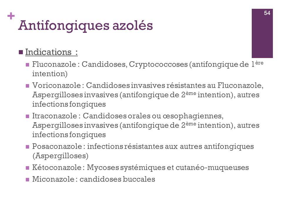 Antifongiques azolés Indications :