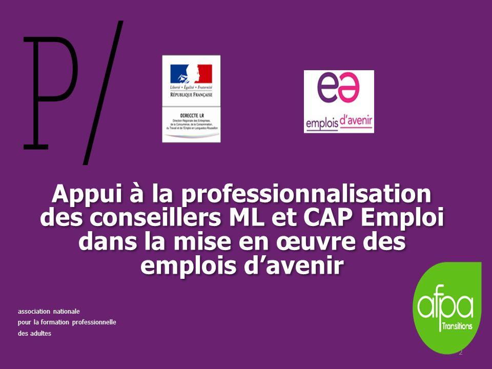 Appui à la professionnalisation des conseillers ML et CAP Emploi dans la mise en œuvre des emplois d'avenir