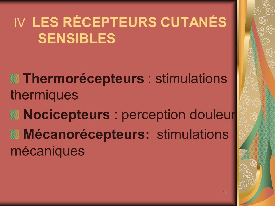 Thermorécepteurs : stimulations thermiques