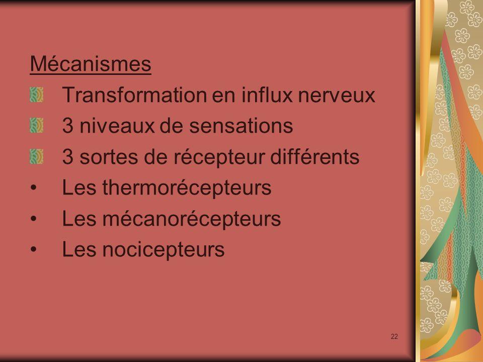 Mécanismes Transformation en influx nerveux. 3 niveaux de sensations. 3 sortes de récepteur différents.