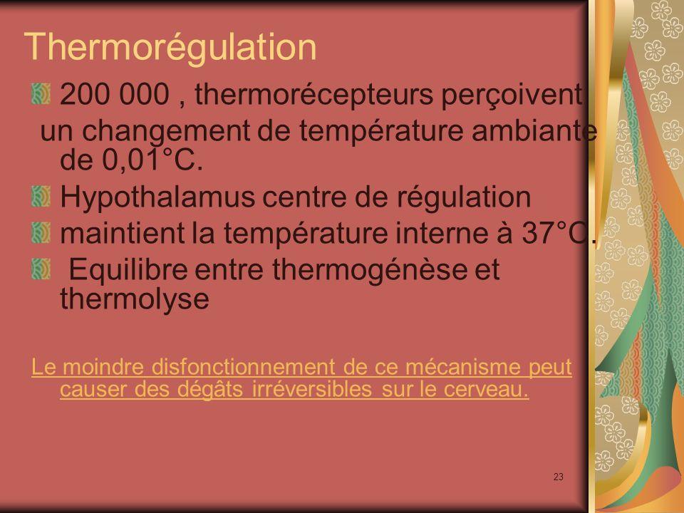 Thermorégulation 200 000 , thermorécepteurs perçoivent