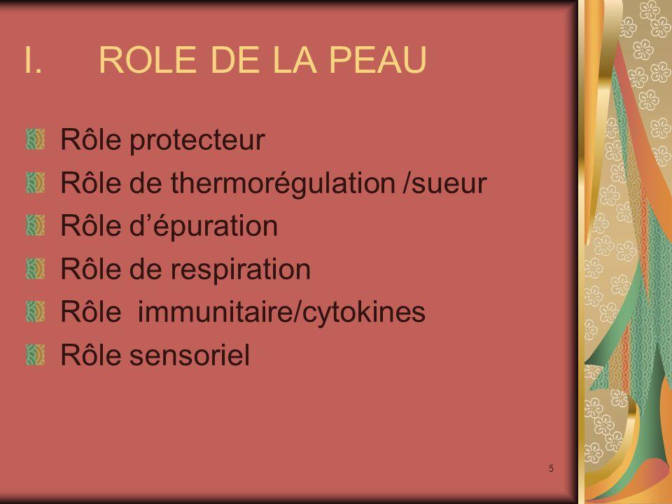 ROLE DE LA PEAU Rôle protecteur Rôle de thermorégulation /sueur