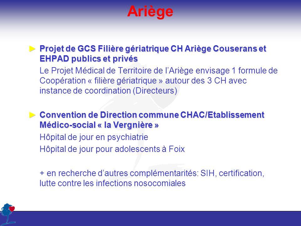Ariège Projet de GCS Filière gériatrique CH Ariège Couserans et EHPAD publics et privés.